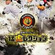 mingle、阪神タイガースの選手カードを収集していく  阪神タイガースカードコレクションアプリ『猛虎レクション』 Google Play版を正式リリース!