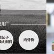 6/8、トップバリュ「タスマニアビーフ商品」SQF認証マーク付きで発売