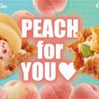 <季節限定>国産白桃(大久保種)を贅沢に使用した『ジューシー ピーチ メルバ』『クランチー ピーチ パイ』発売!