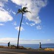 マウイの海岸線沿いを走る「マウイマラソン&ハーフマラソン」10月開催