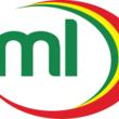 マリ共和国に割り当てられたドメイン、「.ml」の提供開始~国旗が似ているカメルーン、セネガルのドメイン「.cm」と「.sn」も登録受付中~