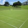 「グラスコートで優雅なテニスプラン」を販売~天然芝のテニスコート~