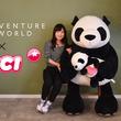 全長160cm 本物のジャイアントパンダよりも大きい!?オリジナルNICIパンダファミリーぬいぐるみ本日6月14日(金)より発売!