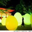 古都京都の世界遺産が、インタラクティブなアート空間に 『下鴨神社 糺の森の光の祭 Art by teamLab ‐ TOKIO インカラミ』