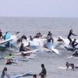 あえて譲らない! 大勢のサーファーが波でごった返すカオスなイベント。