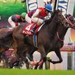 2019プリンスオブウェールズステークス(G1)日本馬の近況(6月15日)