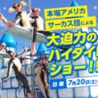 地上約30mの高さから繰り広げられる大迫力パフォーマンス!本場アメリカサーカス団による「ハイダイビングショー」開催