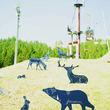 自然アートを感じる切り絵作家 早川鉄兵の 「どうぶつアートの森」「昆虫図鑑の森」切り絵世界展を 長野県佐久市のスキー場にて開催!