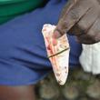 中国漢方の材料目当て ケニア最大湖でナイルパーチ乱獲