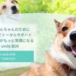 """愛犬との生活をもっと笑顔に。""""健康""""に特化した獣医師監修定期便「こいぬすてっぷ~WAN Smile BOX~」発売開始"""
