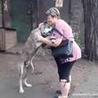 自宅から犬を盗まれて2年後、SNSにより奇跡の再会(ウクライナ)