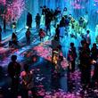 MORI Building DIGITAL ART MUSEUM: EPSON teamLab Borderless《オープン1周年》 世界160ヵ国以上から約230万人が来館