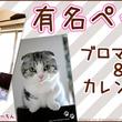 TwitterやInstagramで大人気! 「まっぷーちん」「ミルコ」 コンビニブロマイド販売開始!