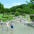 全長210mのきよらかなせせらぎで水遊び!のんびり家族で楽しめる「一庫公園」へ