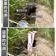 墓地で穴にはまった逆立ち状態の変死体見つかる(台湾)