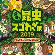 「昆虫の世界」をテーマに、まるで昆虫の世界へ迷い込んだような体験ができるオービィ横浜 夏季イベント『変身!昆虫スゴわざ展2019』開催