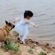 【これぞ忠誠心】ボールを取りに川に近づく少女を危険から守るワンコの動画が話題に!