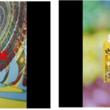 人気ロックバンド「KEYTALK」×「KAGOME GO!ME.プロジェクト」 30種類の本物の野菜でできたベジスタジオで収録したファンタジーでPOPな新楽曲MV公開