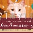 七夕に全ての猫達の幸せを皆で祈ろう!7月6日7日に日本最大級ホゴネコイベント「ネコ市ネコ座withトレッタ」が東京ドームシティで開催!楽しみながら猫助けできるイベント。お得な前売チケット好評販売中!