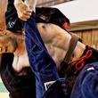 【柔術】佐藤ルミナvs大沢ケンジなど、レジェンドたちがスーパーファイト