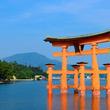 厳島神社の大鳥居、70年ぶり大規模改修 観光客のイタズラが劣化の一因に