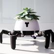 もっと光を! 陽の当たる場所を求めて移動する6脚ロボット・プランター