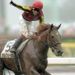 有馬記念のオグリ、ディープ三冠じゃない!競馬予想の達人が選んだ平成の名勝負