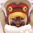 新装備のオトモアイルー&プーギーがフィギュア化!『モンハンワールド:アイスボーン』イーカプコン限定版の最新情報が公開!