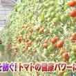 7月7日(日)あさ7:00放送「健康カプセル!ゲンキの時間」、今回のテーマは「~腸!血管!血圧にも!?~超健康食材 赤い野菜」