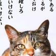 猫「俺より管理しろ」 上から目線の『にゃんぱく宣言』がツボにはまる