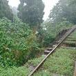 大雨で土砂流出のJR吉都線、バス代行輸送は「当分の間」に変更 土休日も実施