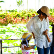 水辺の花が咲き誇る 沖縄県沖縄市で「蓮・睡蓮まつり 2019」開催中