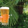 味噌らーめん専門店・みつか坊主は、「箕面ビール」と「小豆島 空き樹バンクプロジェクト」とのコラボビール、「野良レモン」を発売開始します。