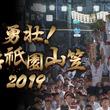 7月15日(月・祝)朝4:20~5:55『勇壮!博多祇園山笠 2019』祭りのフィナーレとなる「追い山」の模様をRKB毎日放送とParaviが同時生中継!