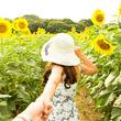 【2019年決定版】この夏おすすめの「ひまわり畑」7選