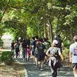 みんなで走って野外フェスに行ってみた【adidas Runners Tokyo×M-ON! MUSIC】