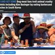"""""""犬食反対""""集会のそばで、食用犬農家らが犬肉を食べて抗議(韓国)<動画あり>"""