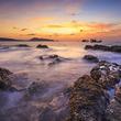 海で二酸化炭素が飽和し、大量絶滅へ向けた転換期に達しつつあるという研究報告(米研究)