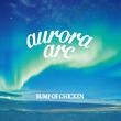 【ビルボード】BUMP OF CHICKEN『aurora arc』14,625DLでダウンロードAL首位