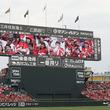 """広島東洋カープ様のマツダ スタジアムに、全国のファンと球場を""""繋げる""""新映像送出システムを納入"""