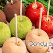 完売必至の渋谷で行列のイタリアンシェフが作る本格スイーツのりんご飴専門店『Candy apple』自由が丘駅に毎月『指定の1週間』限定で7月17日(水)にオープンいたします。