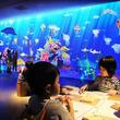 「チームラボ 学ぶ!未来の遊園地」を、ボートレース三国(福井)にて開催。 2019年8月3日(土)~9月1日(日)