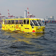 「ピカチュウ」とGO! 水陸両用バスとコラボ決定
