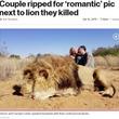 射殺したライオンのそばでキス 非難殺到も夫妻は「飼育された動物を殺して何が悪い」(南ア)