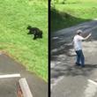 熊の母子に接近しすぎた男性に、子熊を守ろうとした母熊が突進!男性の挑発的行為が物議をかもす!