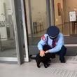 美術館にやってきた『珍客』 警備員とのやり取りに、心がポカポカ