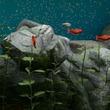 アクアリスト生唾ものの水槽シミュレータ「Biotope」のアーリーアクセス版が,Steamで配信開始