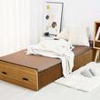 びよ~んと伸ばせばベッドに変身!紙製だけど耐荷重はなんと300kgです