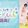 アイドル育成ゲーム「アニドルカラーズ」、ニコニコ動画にて「アニドルch」を開局!寺島惇太さんと土岐隼一さんが出演