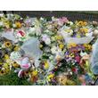 「京アニ」放火事件で「らき☆すた」監督が死亡、中国のファンから悲しみ